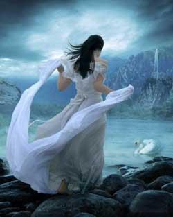 30 лунные сутки - Золотой лебедь